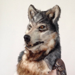 12 Masks of Halloween: #4 Furry Wolf Mask