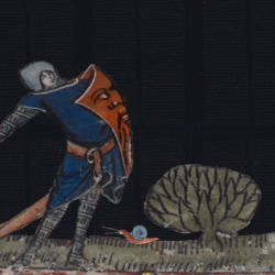 Why did so many medieval knights fight snails?