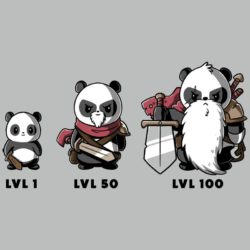 Geek t-shirt: Level up!