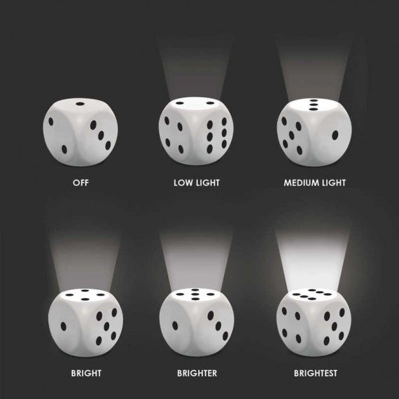 Dice Light instructions