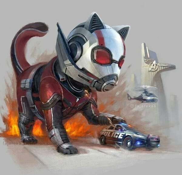 Ant-man has a cat